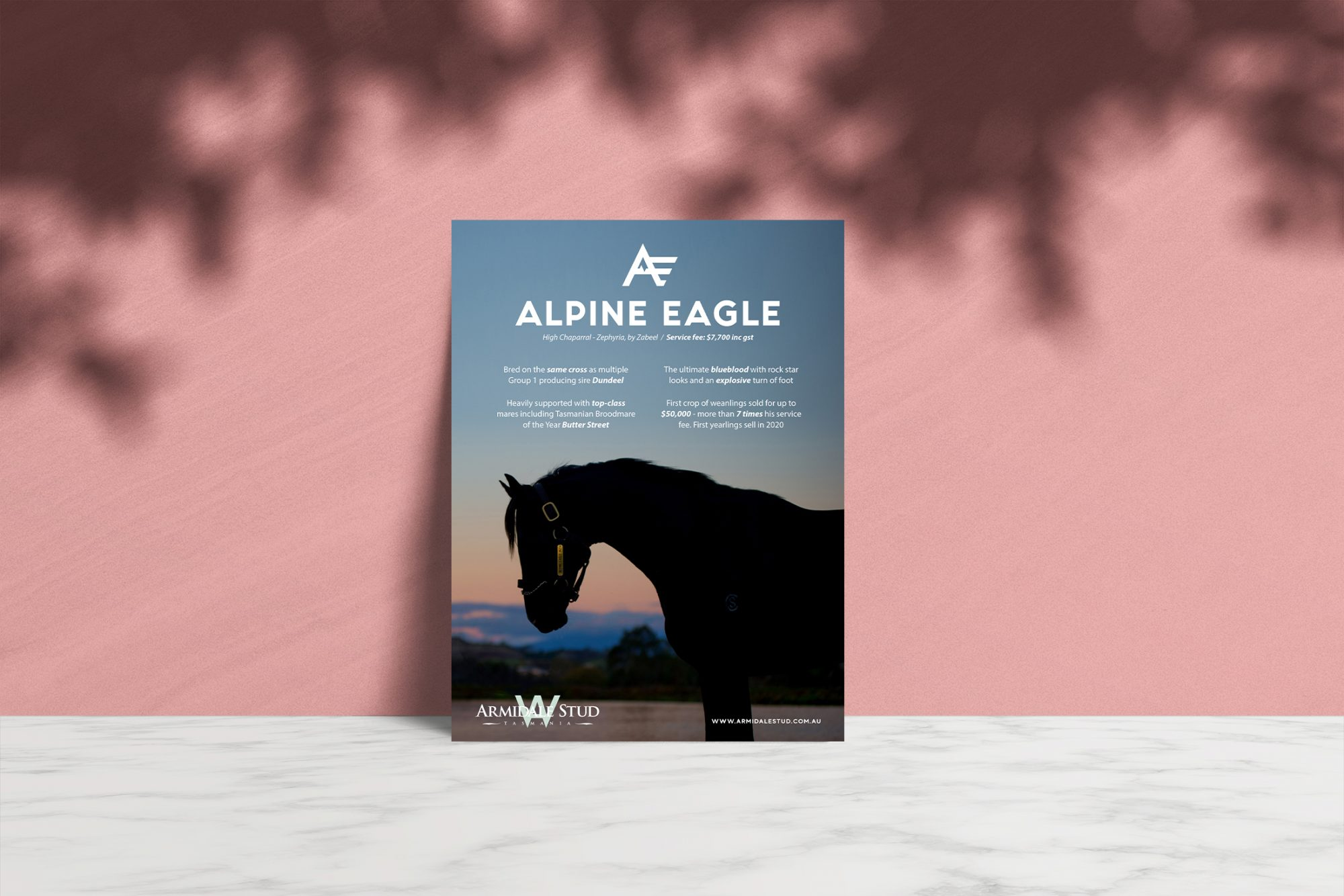 Alpine Eagle Advert 1-webv2
