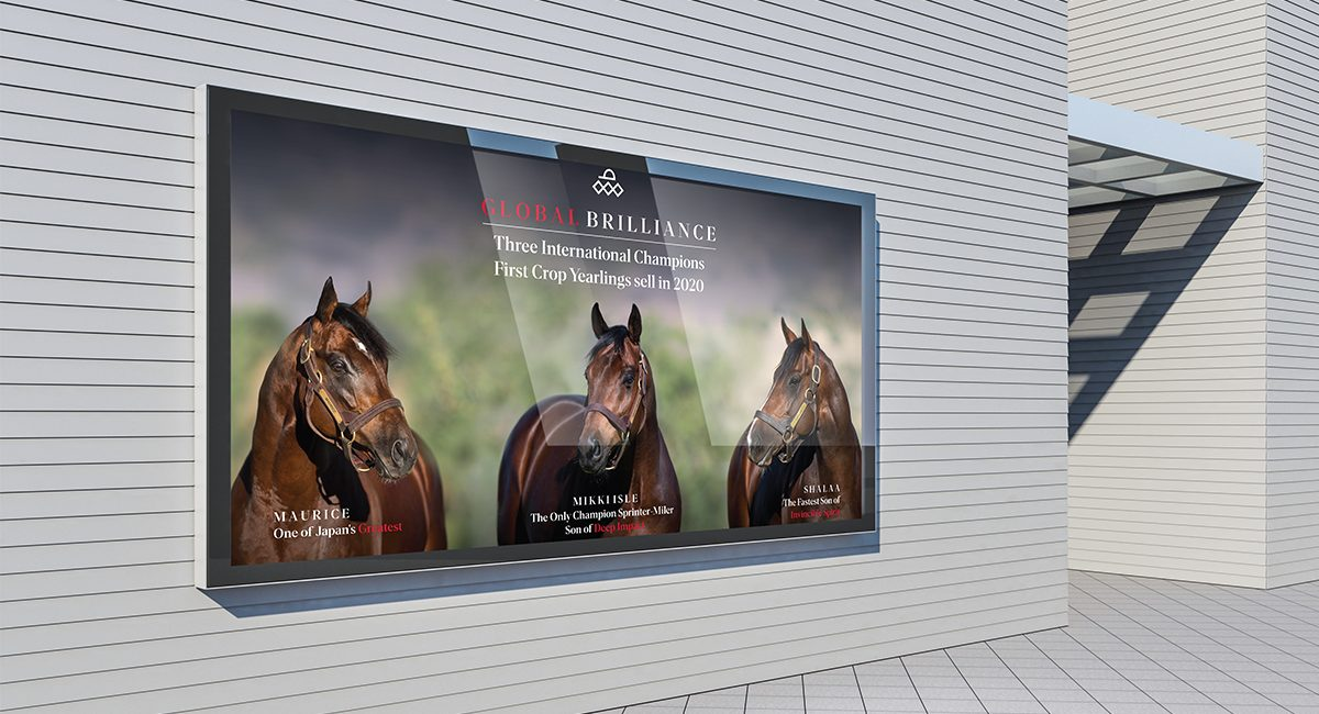 Arrowfield Stud Magic Millions Yearling Sale Signage