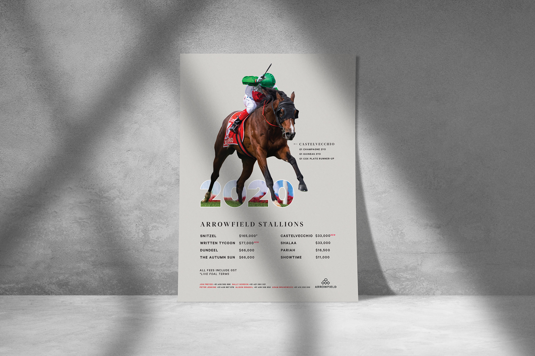Arrowfield Stallion Roster Advert
